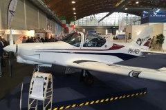 The Pioneer 300 Griffon by Alpi Aviation of Italy