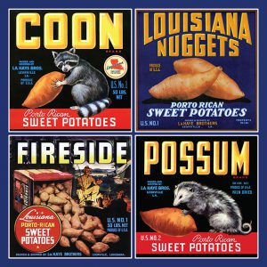 COON, Louisiana Nuggets, Fireside, POSSUM