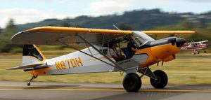 Legend Cub Trainer