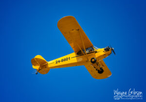 One of many Legend Cubs operating in Australia. Photo courtesy of Wayne Gibson Photographic.